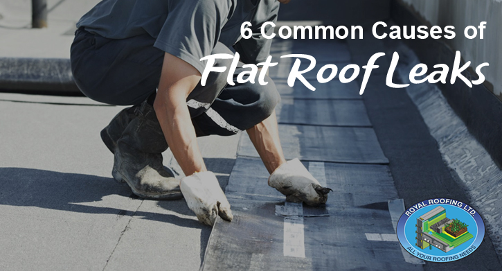 6 Common Causes of Flat Roof Leaks & 6 Common Causes of Flat Roof Leaks | Royal Roofing